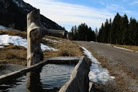 El agua como Derecho y como bien indispensable para la vida